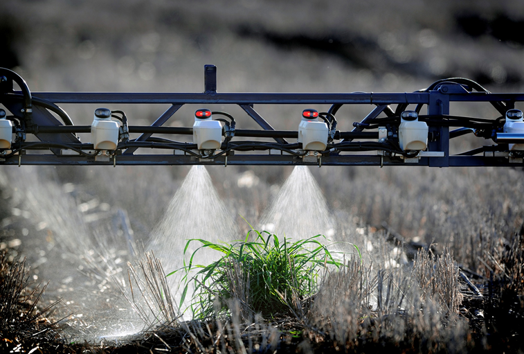 Weeds that survive a pre- or post-emergent herbicide application are frequently herbicide resistant and moderate in size, making them ideal candidates for treatment with optical spray technology using a different mode of action.