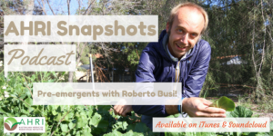 Roberto Busi, pre-emergent herbicide
